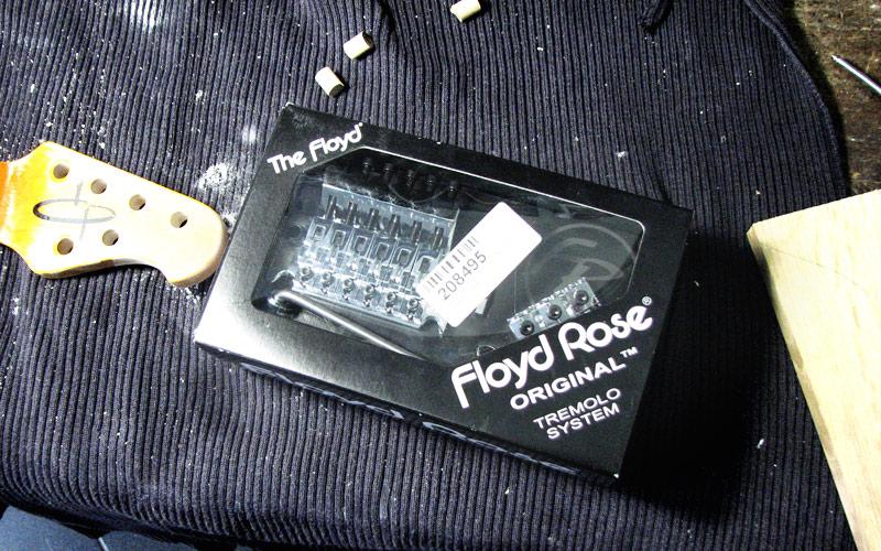 Frankenstein-Floydrose