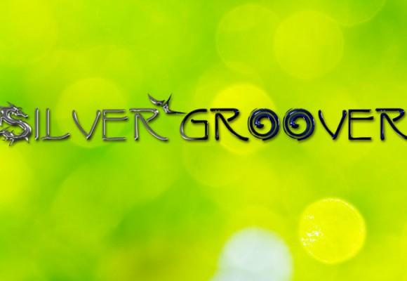 Silvergroover Logo