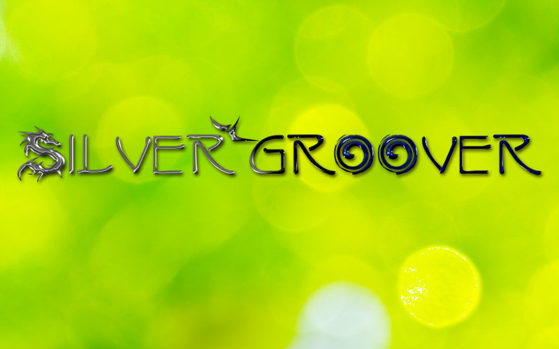Silvergroover Logo